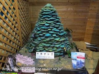 千年サンゴ模型